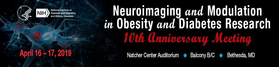 Neuroimaging and Modulation in Obesity and Diabetes Research 10th Anniversary Meeting web banner
