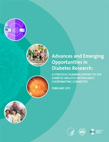 Advances and Emerging Opportunities in Diabetes Research cover
