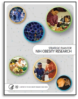 Strategic Plan for NIH Obesity Research cover