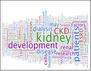 Word Cloud of Kidney Research National Dialogue