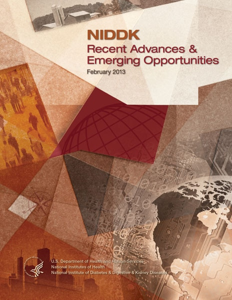Thumbnail cover image of NIDDK Recent Advances and Emerging Opportunities February 2013 edition