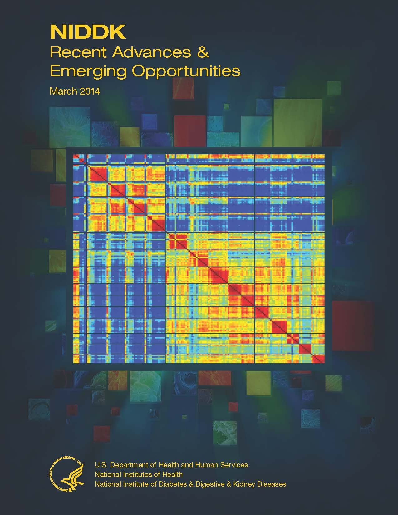 Thumbnail cover image of NIDDK Recent Advances and Emerging Opportunities March 2014 edition