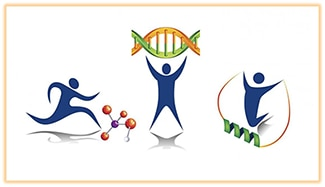 Molecular Transducers of Physical Activity in Humans logo