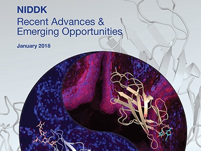 Cover of the 2018 NIDDK Recent Advances and Emerging Opportunities report