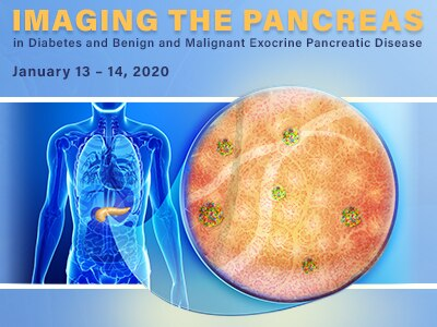 Imaging the Pancreas in Diabetes, and Benign and Malignant Exocrine Pancreatic Disease meeting image