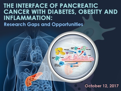 The Interface of Pancreatic Cancer With Diabetes, Obesity and Inflammation: Research Gaps and Opportunities