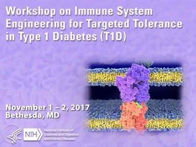 Workshop on Immune System Engineering for Targeted Tolerance in Type 1 Diabetes (T1D)
