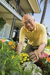 An older asian man doing some work in his garden