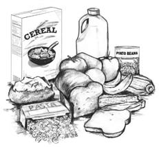 Drawing of foods that contain carbohydrates, including cereal, pasta, bread, fruits, pinto beans, milk, and a potato.