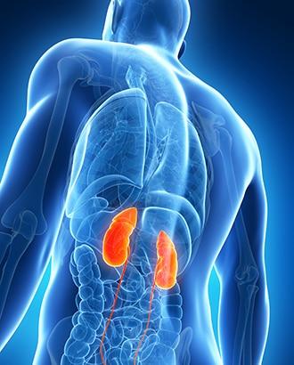 sintomas de insuficiencia renal por diabetes tipo