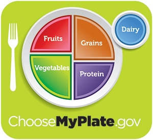 Image of the plate method showing proper portions of fruits, vegetables, grains, protein, and dairy.