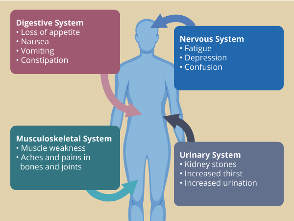 human body with arrows indicating that primary hyperparathyroidism can affect the digestive system, nervous system, muscloskeletal system, and urinary system