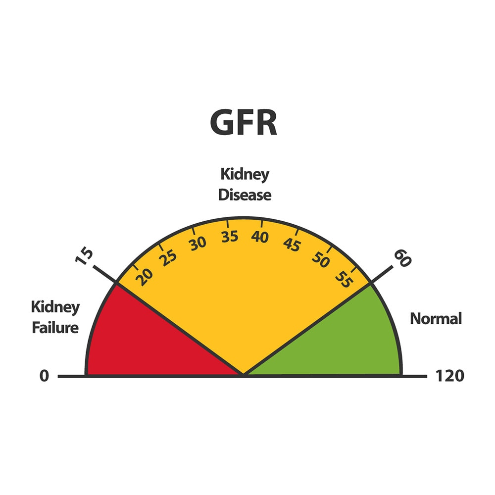 Chronic Kidney Disease Ckd Niddk