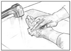 Dibujo de dos manos lavándose con jabón debajo del grifo de un lavabo.