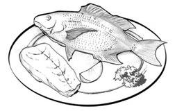 Alimentación Y Nutrición Durante La Hemodiálisis Niddk