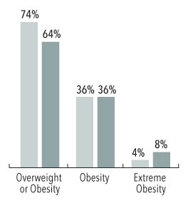 Bar graph showing obesity rates Estimated Percentage by Sex
