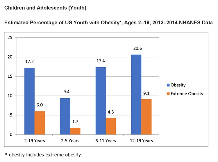 Graph showing estimated percentage of US youth with obesity, broken out by age: 2-19 years, 2-5 years, 6-11 years, and 12-19 years.