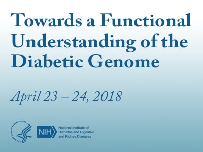 Towards a Functional Understanding of the Diabetic Genome rotator