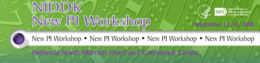 New PI Workshop 2018 Web Banner