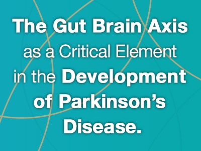 Web rotator for Web banner for The Gut Brain Axis as a Critical Element in the Development of Parkinson's Disease virtual meeting