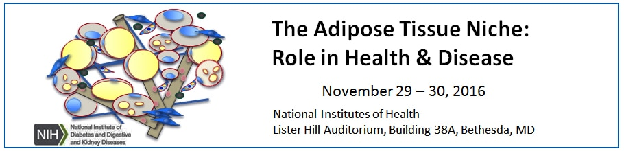 Banner for the 2016 Adipose Tissue Niche: Role in Heath and Disease Meeting.