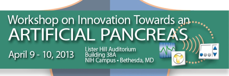 Banner for the 2013 Workshop on Innovation Towards an Artificial Pancreas.