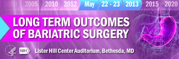 Banner for the 2013 Long Term Outcomes of Bariatric Surgery Meeting.
