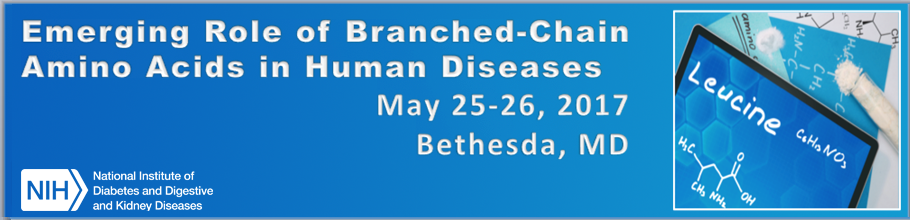 Banner for the 2017 Emerging Role of Branched-Chain Amino Acids in Human Diseases Meeting.
