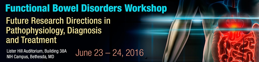 Banner for the 2016 Functional Bowel Disorders Workshop.