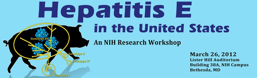 Banner for the 2012 Hepatitis E in the United States Workshop.