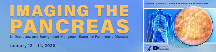 Imaging the Pancreas web banner