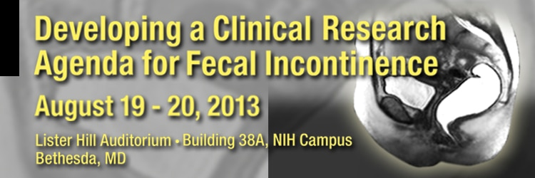 Banner for the 2013 Developing a Clinical Research Agenda for Fecal Incontinence Meeting.