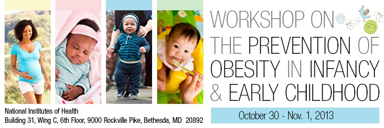 Banner for the 2013 Workshop of The Prevention of Obesity in Infancy and Early Childhood.