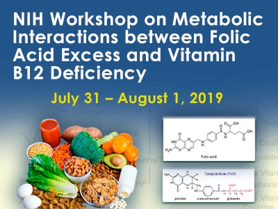 Workshop on Metabolic Interactions between Folic Acid Excess and Vitamin B12 Deficiency web rotator