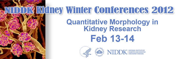 Banner for the 2012 NIDDK Kidney Winter Conferences