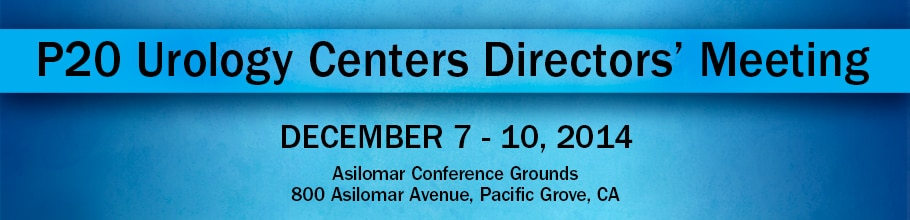 Banner for the 2013 P20 Urology Centers Directors' Meeting