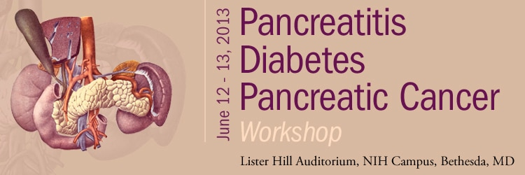 Banner for the 2013 Workshop on Pancreatitis, Diabetes and Pancreatic Cancer