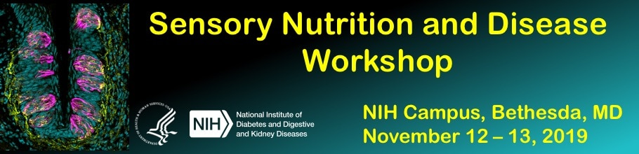 Sensory Nutrition and Disease Workshop banner
