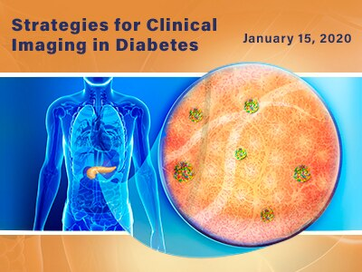 Strategies for Clinical Imaging in Diabetes web rotator