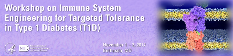 Banner for the 2017 Workshop on Immune System Engineering for Targeted Tolerance in Type 1 Diabetes (T1D)