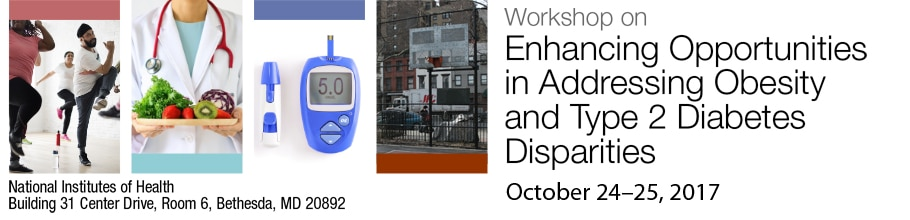 Banner for the 2017 Workshop on Enhancing Opportunities in Addressing Obesity and Type 2 Diabetes Disparities