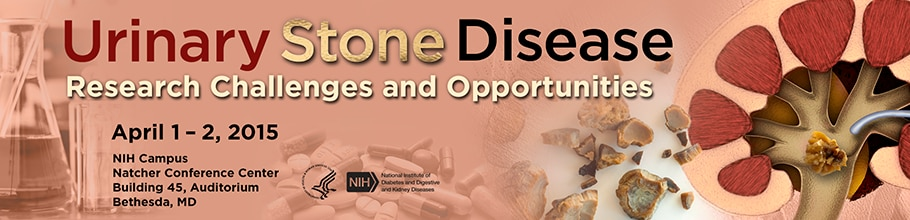 Banner for the 2015 Workshop on Urinary Stone Disease
