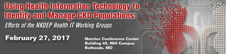 Banner for the 2017 Workshop on Using Health IT to Identify and Manage CKD Populations: Efforts of the NKDEP Health IT Working Groups