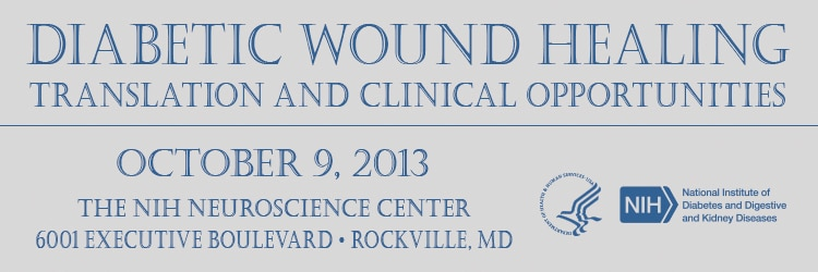 Banner for the 2013 Workshop on Diabetic Wound Healing-Translation and Clinical Opportunities