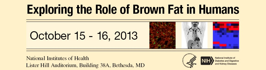 Banner for the 2013 Exploring the Role of Brown Fat in Humans Meeting.