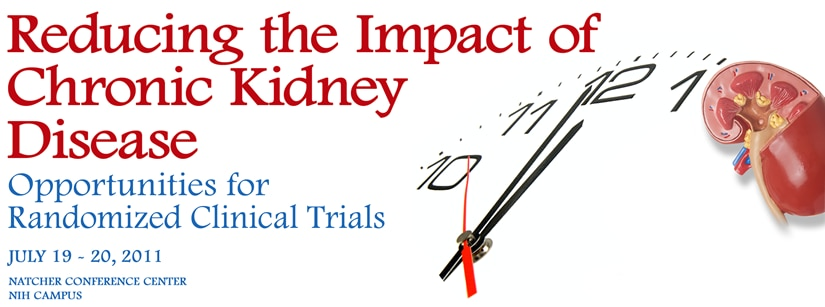 Banner for the 2011 Reducing the Impact of Chronic Kidney Disease Meeting.