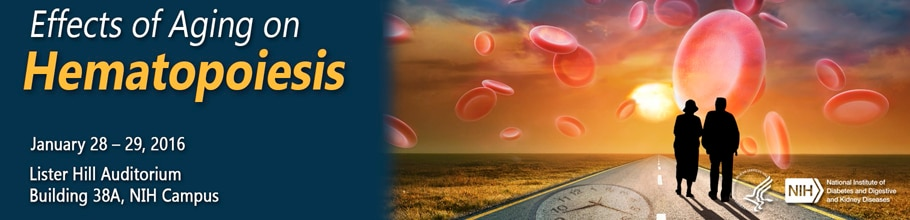 Banner for the 2016 Effects of Aging on Hematopoiesis Meeting.