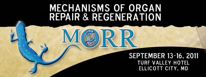 Banner for the 2011 Workshop on Mechanisms of Organ Repair and Regeneration