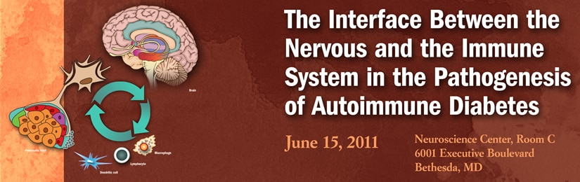 Banner for the 2011 Workshop on the Interface Between the Nervous and the Immune System in the Pathogenesis of Autoimmune Diabetes