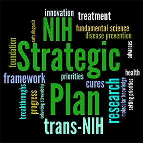 Image of words related to strategic plans